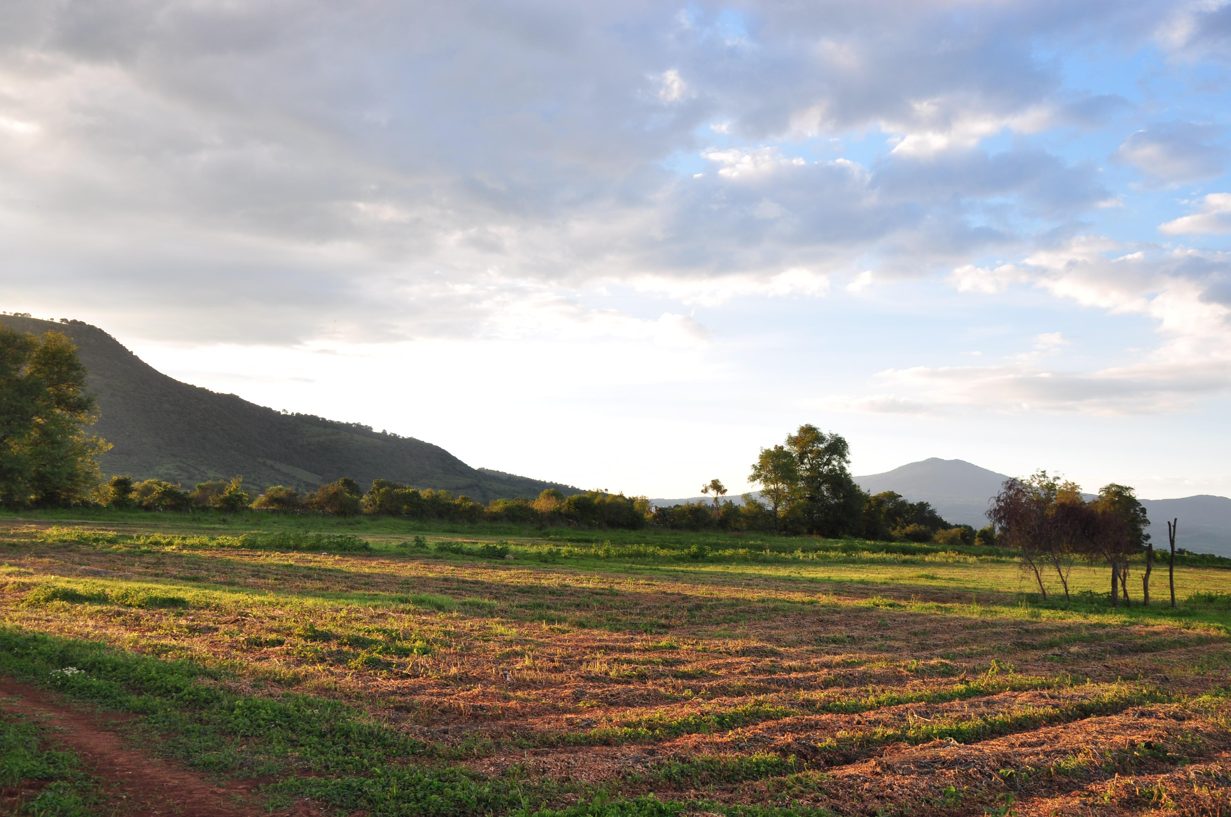 Terrenos Y Casas Ranchos Del Camino Real